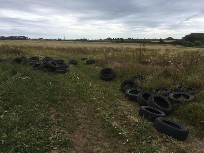 Around 40 tyres have been dumped in Mathew Kessel's field