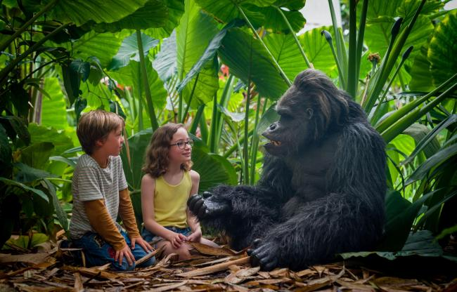There is a chance to meet Gerald the gorilla, the star of the Eden Project's Earth Story event