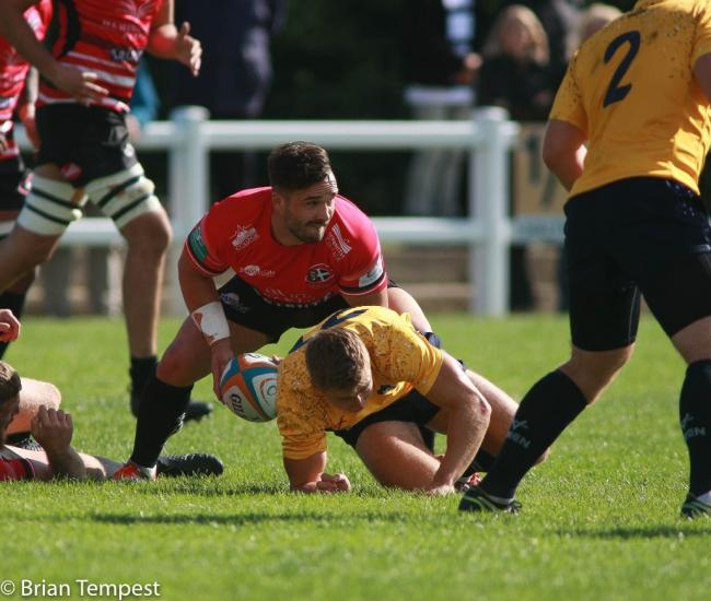 Scrum-half Jean-Baptist Bruzulier made his debut for the Cornish Pirates in their 43-0 win over his former club Yorkshire Carnegie on Saturday. Photo by Brian Tempest.