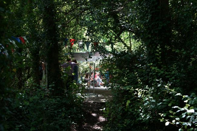 Falmouth environmental groups have established an action plan to preserve local woodlands