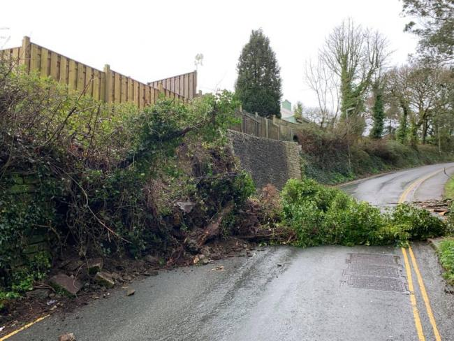 The tree down at Truro Hill. Picture: Penny Morgan