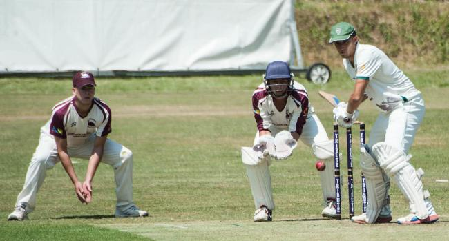 Cricketers must follow a new set of strict guidelines. Picture by Colin Higgs