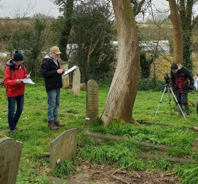 Friends of Ponsharden Cemetery carry out a tree survey in March last year