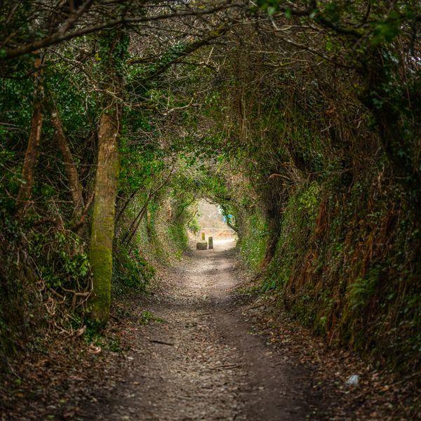 Wander around Cornish Mars, by Steve Brickstock