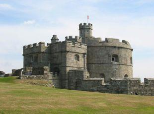 Pendennis Castle in Falmouth was the scene of the dog sex