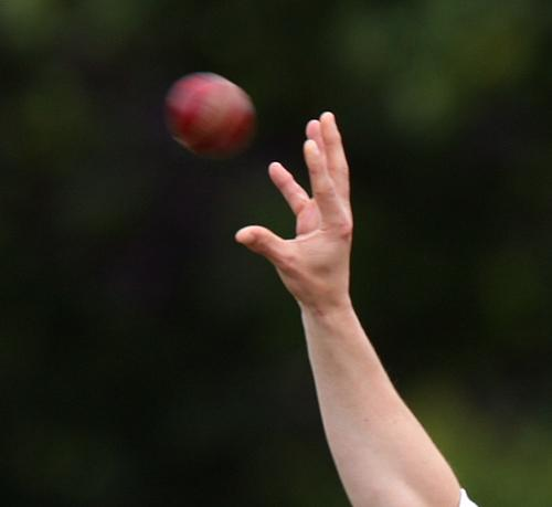 CRICKET: Cornwall lose in thriller