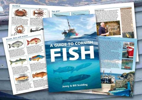 Cadgwith couple create guide to Cornish fish
