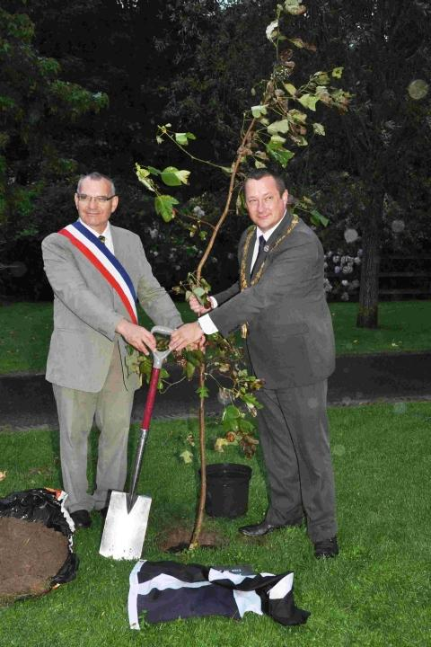 Helston's mayor Jonathan Radford-Gaby and the mayor of Plougasnou Yvon Tanguy jointly planted a ten-foot high 'Tulip Tree'