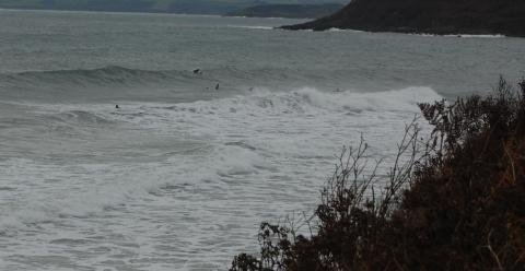 Treat for Falmouth surfers as waves roll in at Gylly beach: PICTURES