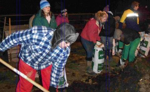 Where there's muck there's brass for Helston young farmers