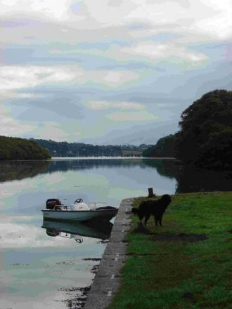 Interested in marine conservation on the Helford?