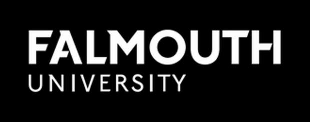 Falmouth is 'top specialist arts university'