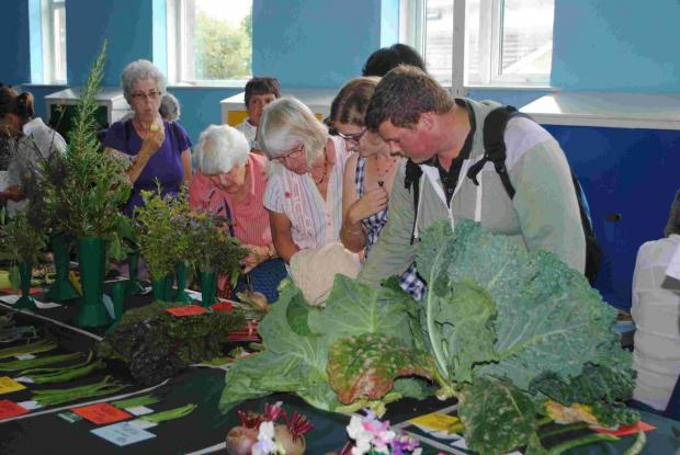 Green fingered growers ready for Falmouth Allotments Society garden flower and produce show