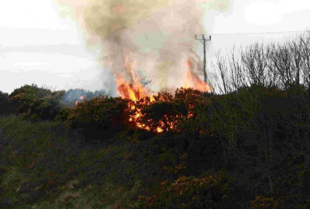 Dozen calls to fire service after gorse blaze breaks out near Godrevy