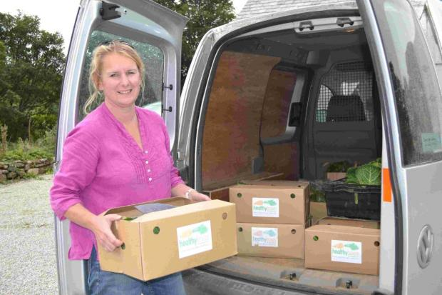 'Healthy Hubs' needed for West Cornwall veg box business