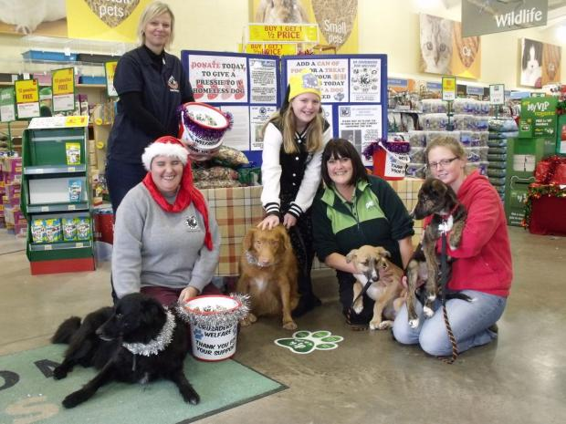 Falmouth Packet: K9 Crusader volunteers, Sam, Ruby, Diesel and Alfie with Pets At Home staff member Mandy Crossley.
