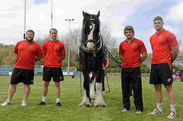 Shire horse company hits back at Royal Cornwall Show tug of war cruelty claims
