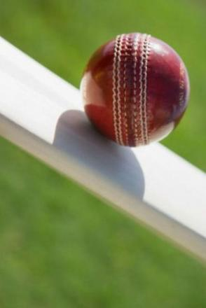 CRICKET: Mullion edge over the line
