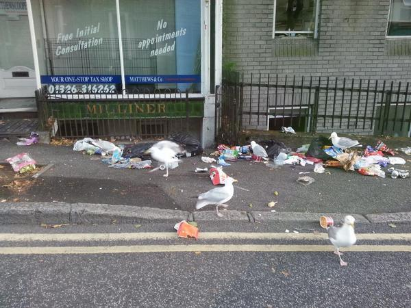 Stinky scenes in Falmouth as rubbish strewn across streets