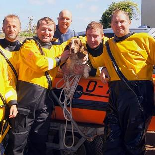 Sprig, pictured with his rescuers, was reunited with his owners after spending more than a week trapped at sea (RNLI Minehead/PA)