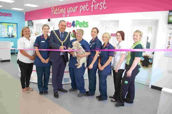 New Falmouth pet store chooses Helston cat charity as partner