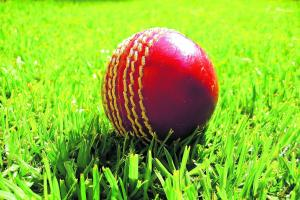 CRICKET: Constantine win Mining League opener against St Gluvias