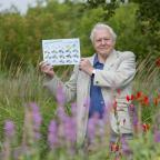 Falmouth Packet: Sir David Attenborough launched the Big Butterfly Count in London in 2015.