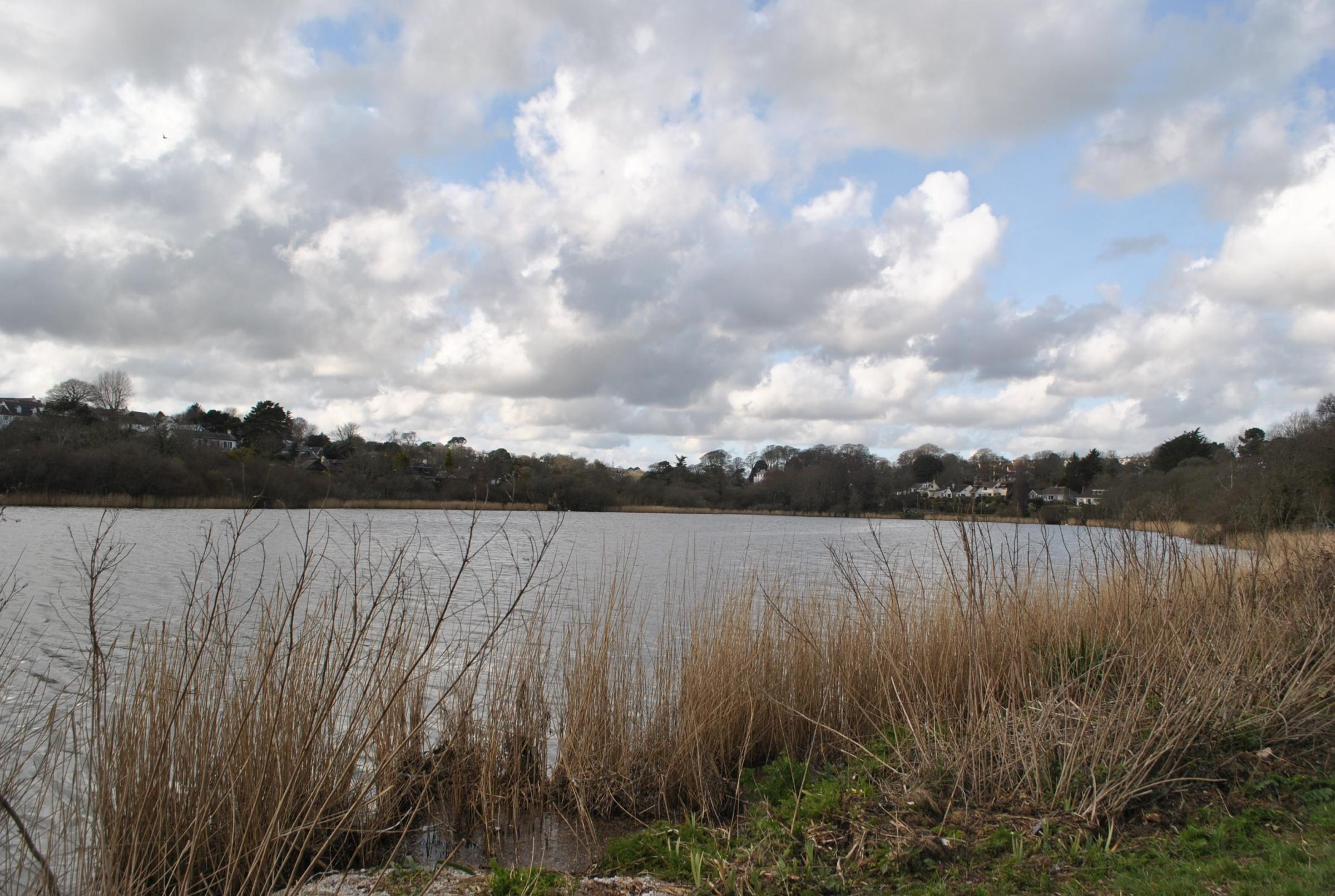 There are concerns the development could impact on the Swanpool SSI.