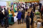 The long-running Penwith Green Fair is due to return to St John's Hall in Penzance on Easter Sunday
