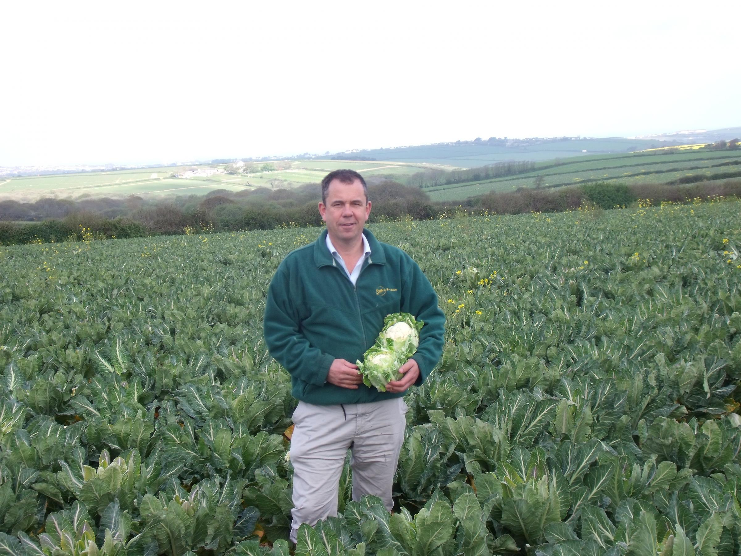 The Hayle-based farm started working with Aldi six years ago