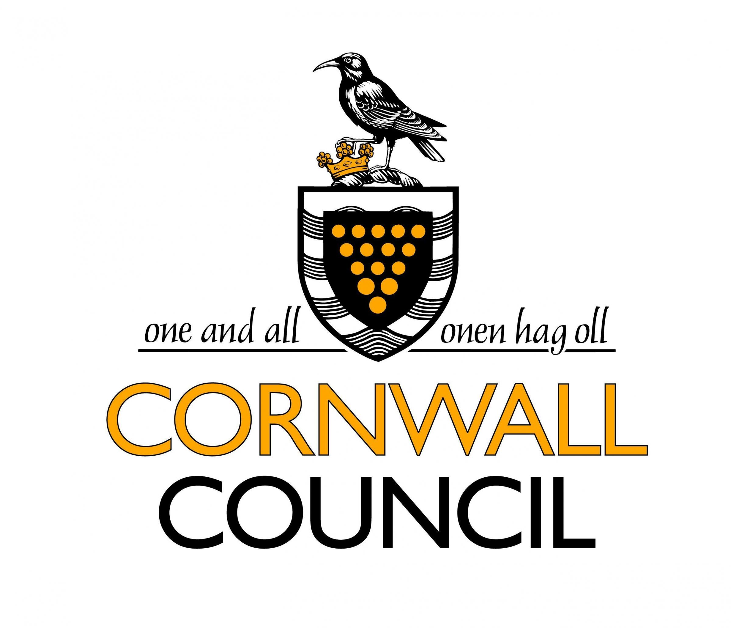 Image result for Cornwall Council logo