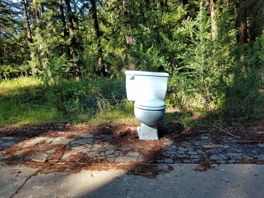 A stock picture of what a toilet looks like dumped on a road