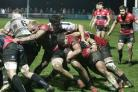 The Cornish Pirates finished fifth in the Greene King IPA Championship this season. Picture by Brian Tempest